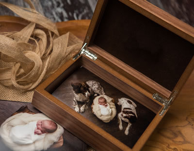 Walnut Print Box for Professional Photographers